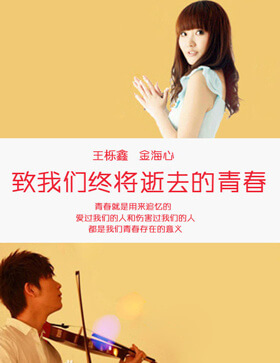 《致青春》——音乐剧and小说